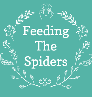 Feeding The Spiders